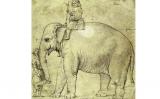 Dibuix de l'elefant Hanno fet per Raffaello Sanzio