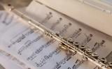 Peces per a flauta a la playlist de SÀPIENS
