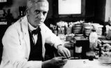 Alexander Fleming -  Wikimedia Commons