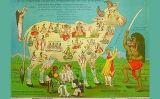 Pamflet que va circular a l'Índia durant el mandat britànic com a protesta contra el consum de vaques
