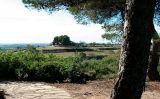Cota 481 de Vilalba dels Arcs -  Wikipedia