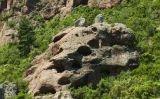 El lloc que hauria inspirat Antoni Gaudí al Baix Camp