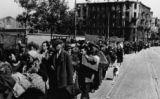 Refugiats durant la Segona Guerra Mundial