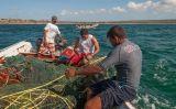 Pescadors amb les xarxes