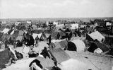El camp rossellonès d'Argelers, on malvivien més de 70.000 exiliats