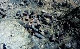 Es van reutilitzar les llaunes que els soldats havien abandonat al front