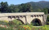 Ponte Nuovo sul Golo, l'escenari de la batalla decisiva