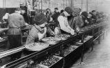 Treballadors a la primera cadena de muntatge del món a la planta de Highland Park, a Michigan, el 1913