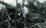 Restes de l'avió de la companyia anglesa Dan Air