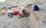 Eudald Carbonell excava a Eritrea