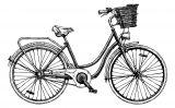 200 anys de bicicletes (Il·lustració del número 6 del Petit SÀPIENS)