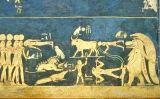 Pintura que representa el cel nocturn, al sostre de la cambra funerària de Sethi I