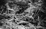 Soldats alemanys morts després de l'explosió d'una mina durant la batalla de Messines, el 1917