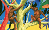 Evolució. (I·lustració del número 14 del Petit SÀPIENS)