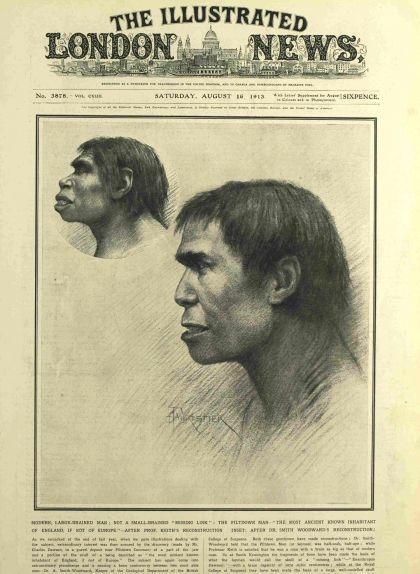 Portada de la revista 'Illustrated London News' del 16 d'agost de 1913 amb dues il·lustracions de l'home de Piltdown