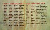 'Tractatus de Astrolabio'