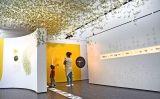 MuseuGranollersPetitSapiens24