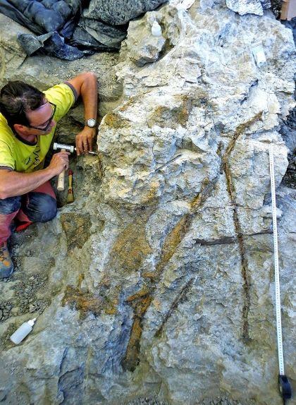 L'excavació al jaciment d'Orcau l'any 2011