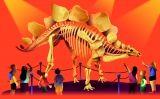 Petit 31 Dinosaures