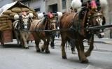 Processó dels tres tombs a Igualada (imatge del 2006)